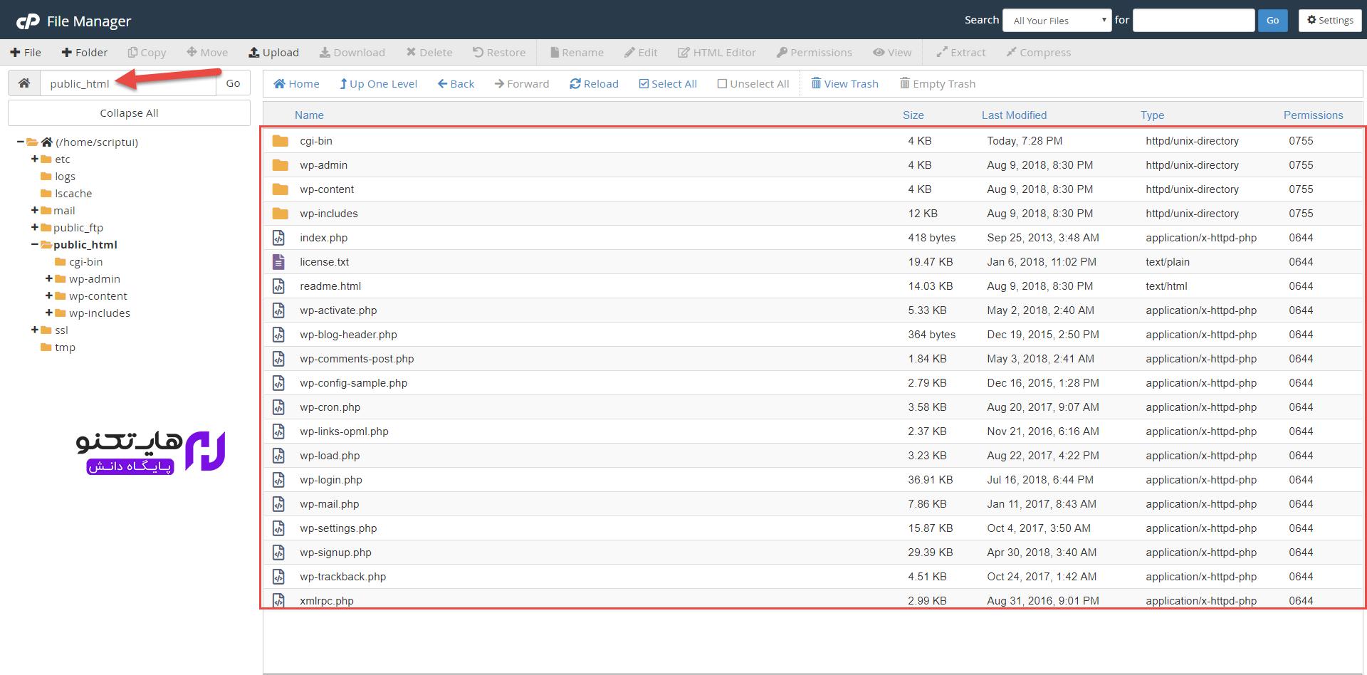 سپس مجددا وارد مسیر public_html شوید تا فایل های وردپرس را در اینجا مشاهده کنید.