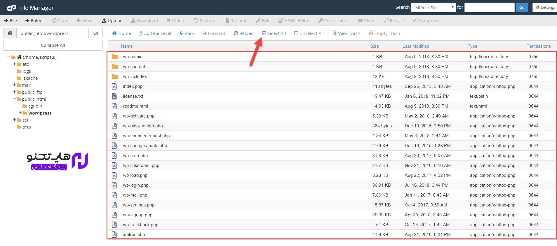 تمام فایل های وردپرس را توسط ابزار select all انتخاب کنید.